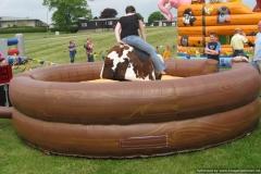 Inflatable Bucking Bronco